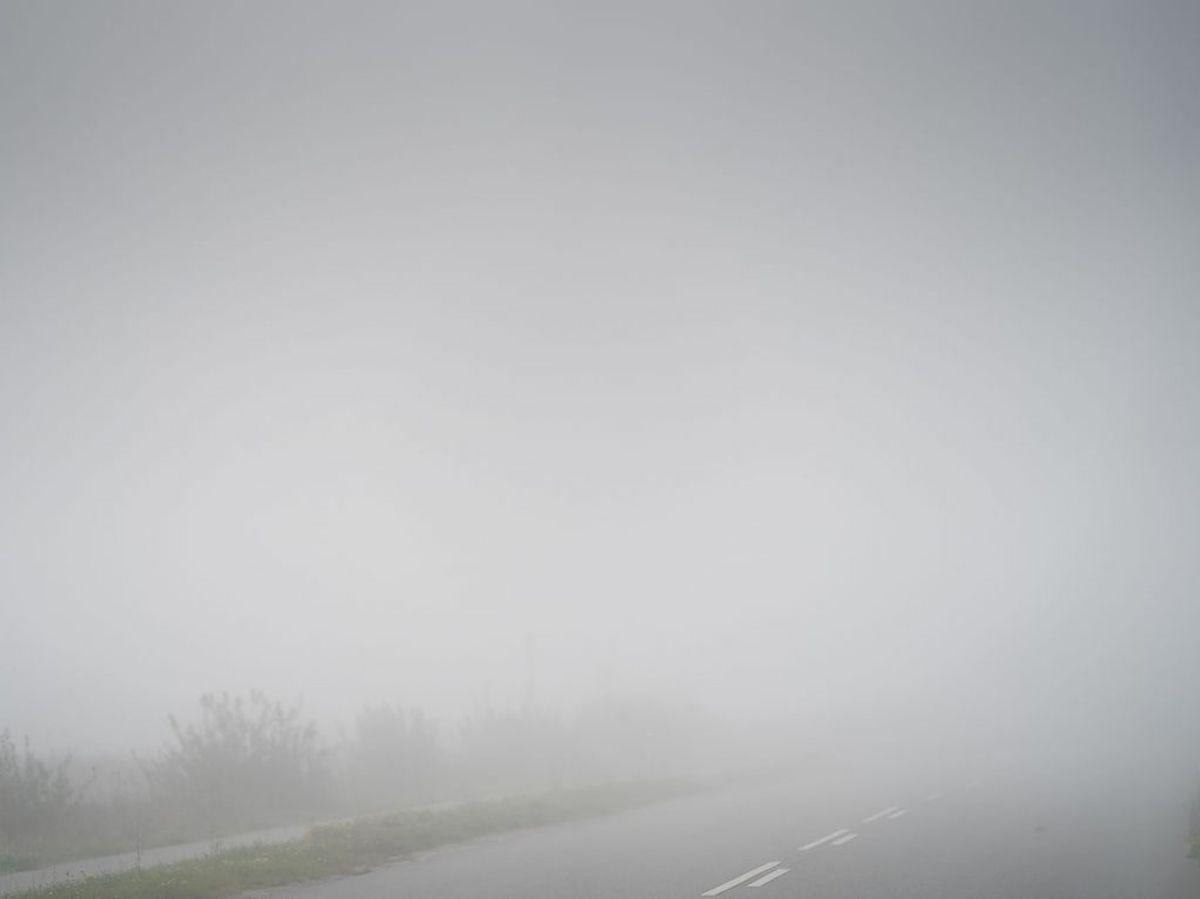 Den tætte tåge – der bevirker meget lav sigtbarhed – forudser vagtchefen vil give problemer i trafikken. (Foto: Mads Claus Rasmussen/Ritzau Scanpix)