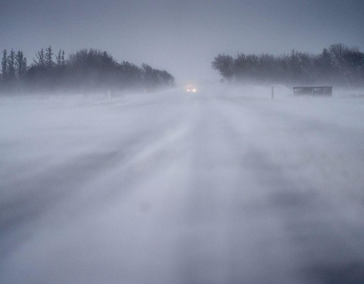 Et kraftig snevejr, der kan udvikle sig til en regulær snestorm, har kurs mod Danmark. Det oplyser DMI. Arkivfoto: Mads Claus Rasmussen/Ritzau Scanpix