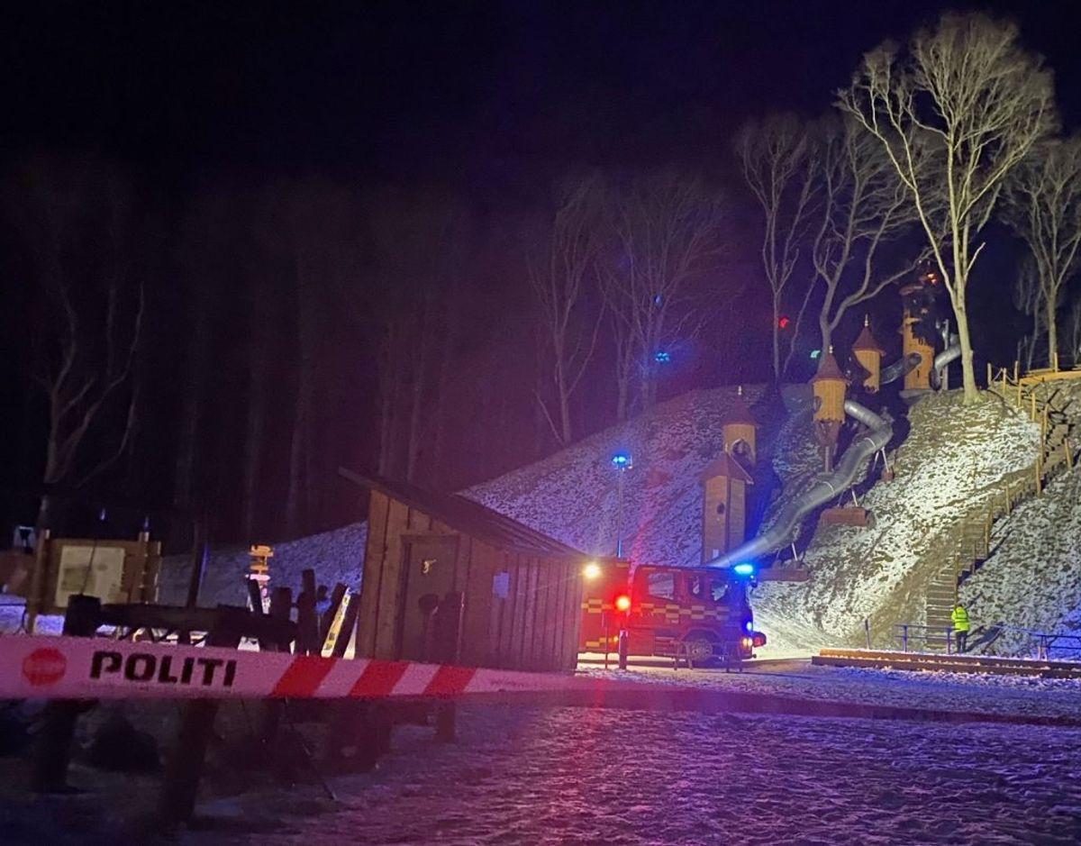 En naturlegeplads, drevet af frivillige, har fået ødelagt et tårn ved en brand. KLIK FOR FLERE BILLEDER. Foto: Presse-fotos.dk.