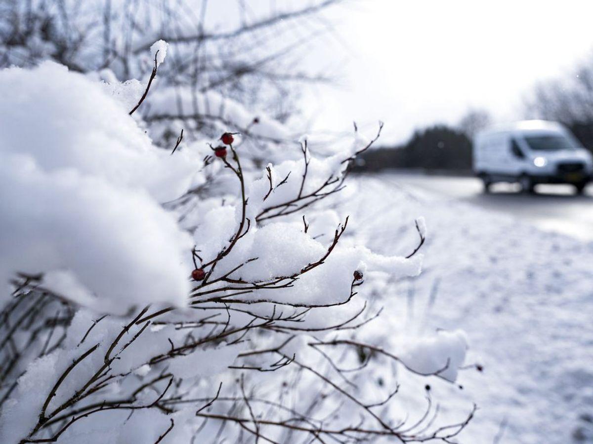Der er udsendt varsel for Bornholm. (Foto: Claus Fisker/Ritzau Scanpix)