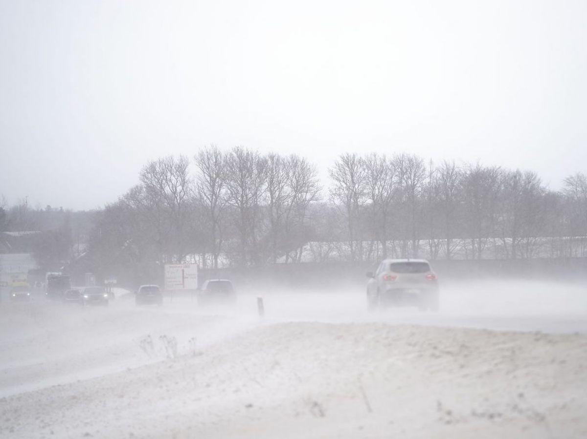 Det voldsomme vejr er startet- Ifølge DMI bliver det værre. KLIK og se flere billeder af vejret. Foto: Mads Claus Rasmussen/Ritzau Scanpix