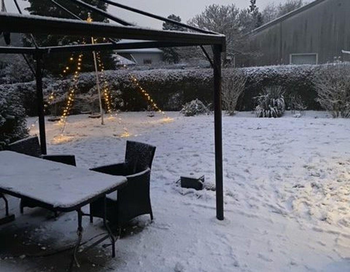 Lena har sendt os dette billede fra Helsingør.