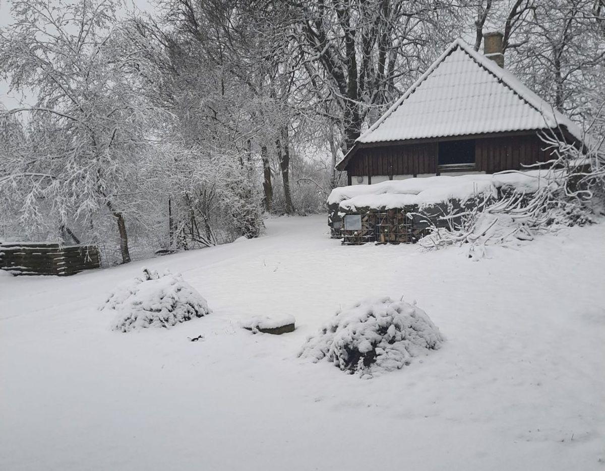 Bettina har sendt dette billede fra Stenstrup på Fyn.