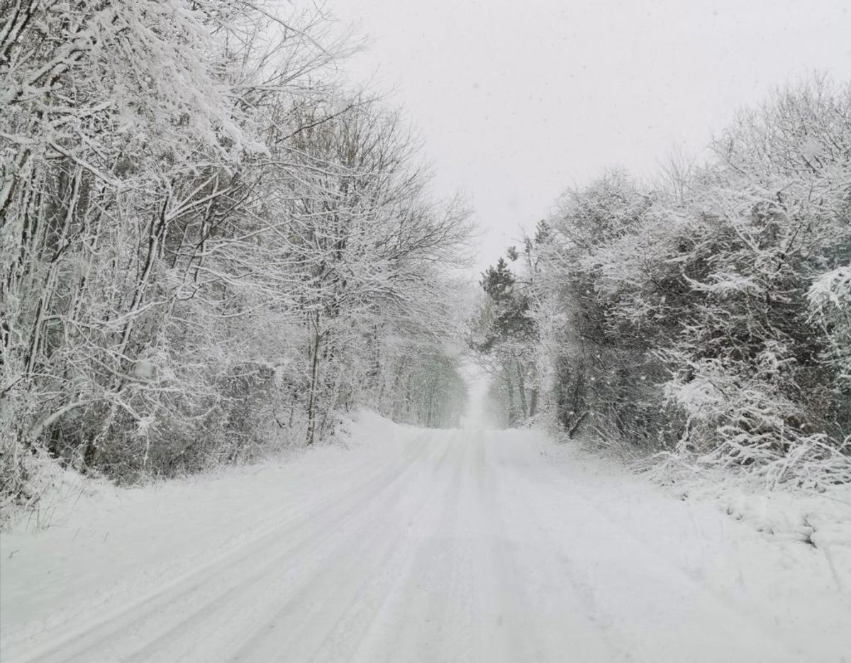 Snevejr på Fyn nær Føns, skriver Gitte Klüver.