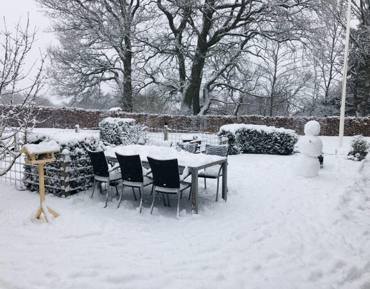 Charlotte sender dette billede fra Børkop ved Vejle – 10 centimeter sne, skriver hun.