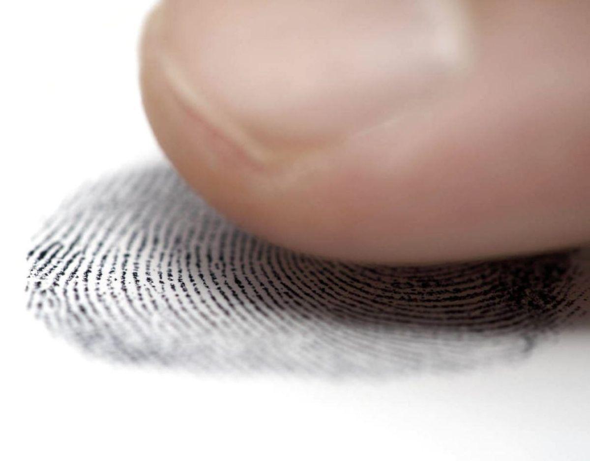 Bakteriesammensætningen i din tarm er ligeså unik som dit fingeraftryk. Ingen andre har samme bakteriesammensætning som dig. Foto: Scanpix