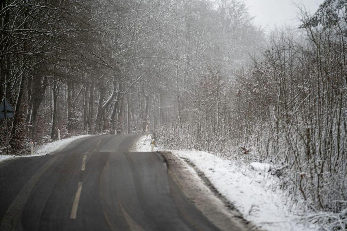 I det nordjyske vil man formentlig opleve sne på vejene. Foto: Claus Rasmussen/Ritzau Scanpix)