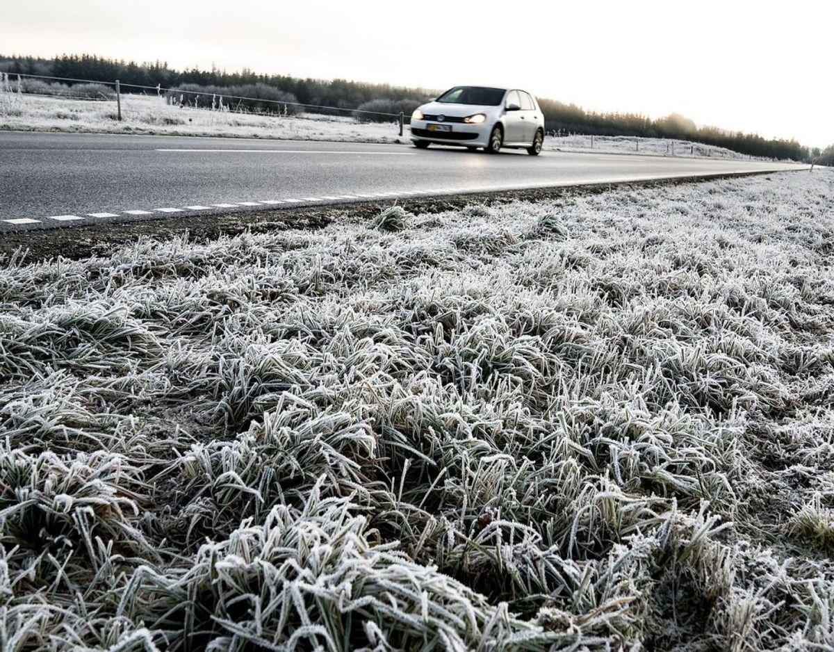 Rimtågen kan falde flere steder i landet. (Foto: Henning Bagger/Scanpix)