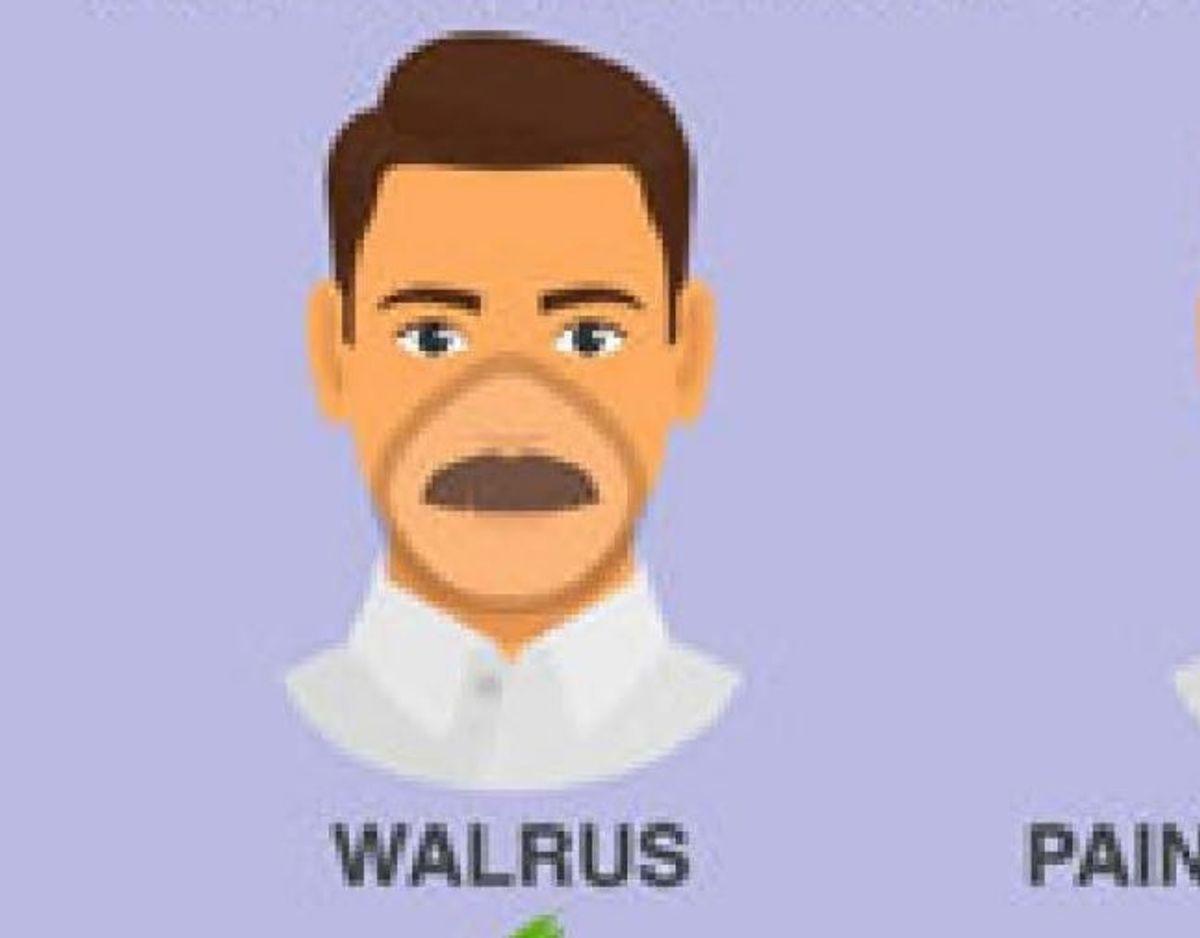 Det samme er hvalros-skægget. Foto: CDC