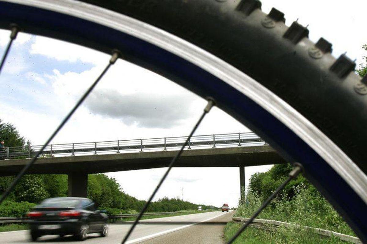 17: Det koster 700 kroner i bøde, hvis man cykler ulovligt på motorveje og motortrafikveje. Foto: Claus Fisker/Scanpix
