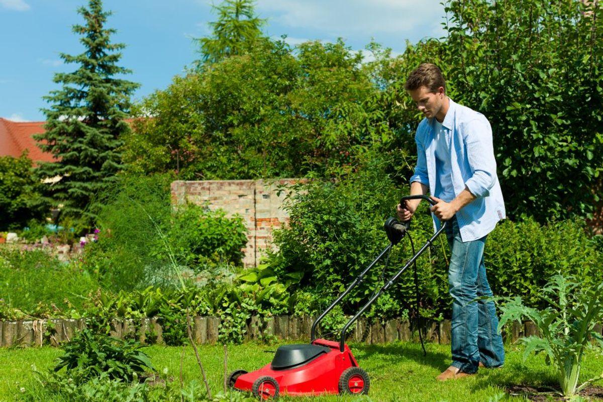 Lås hoveddøren, hvis du er i haven. KLIK for næste råd. Foto: Scanpix.
