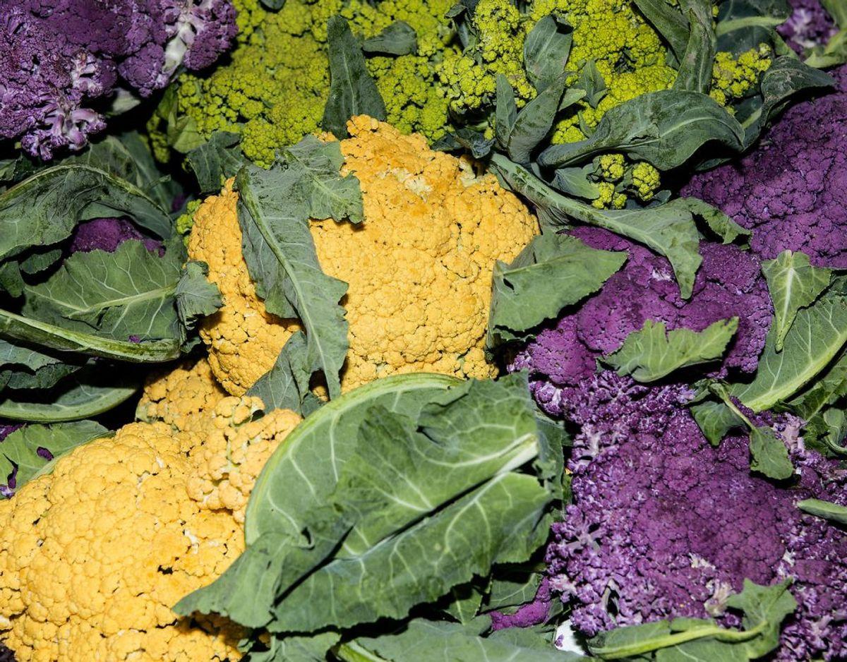 1) Spis planterigt, varieret og ikke for meget. Foto: Scanpix