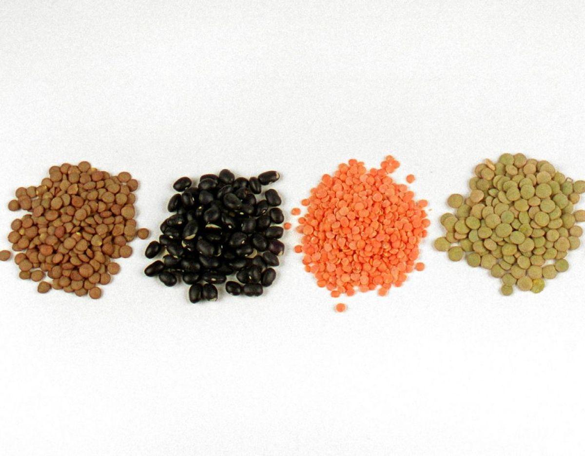 3) Spis mindre kød – vælg bælgfrugter og fisk. Foto: Scanpix