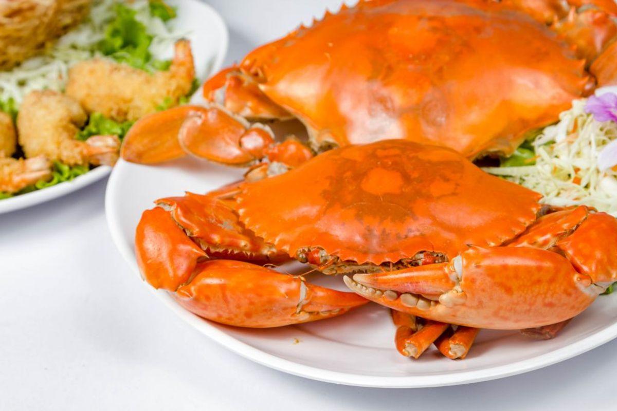 Det samme gælder brunt krabbekød. Spis derfor kun det lyse.