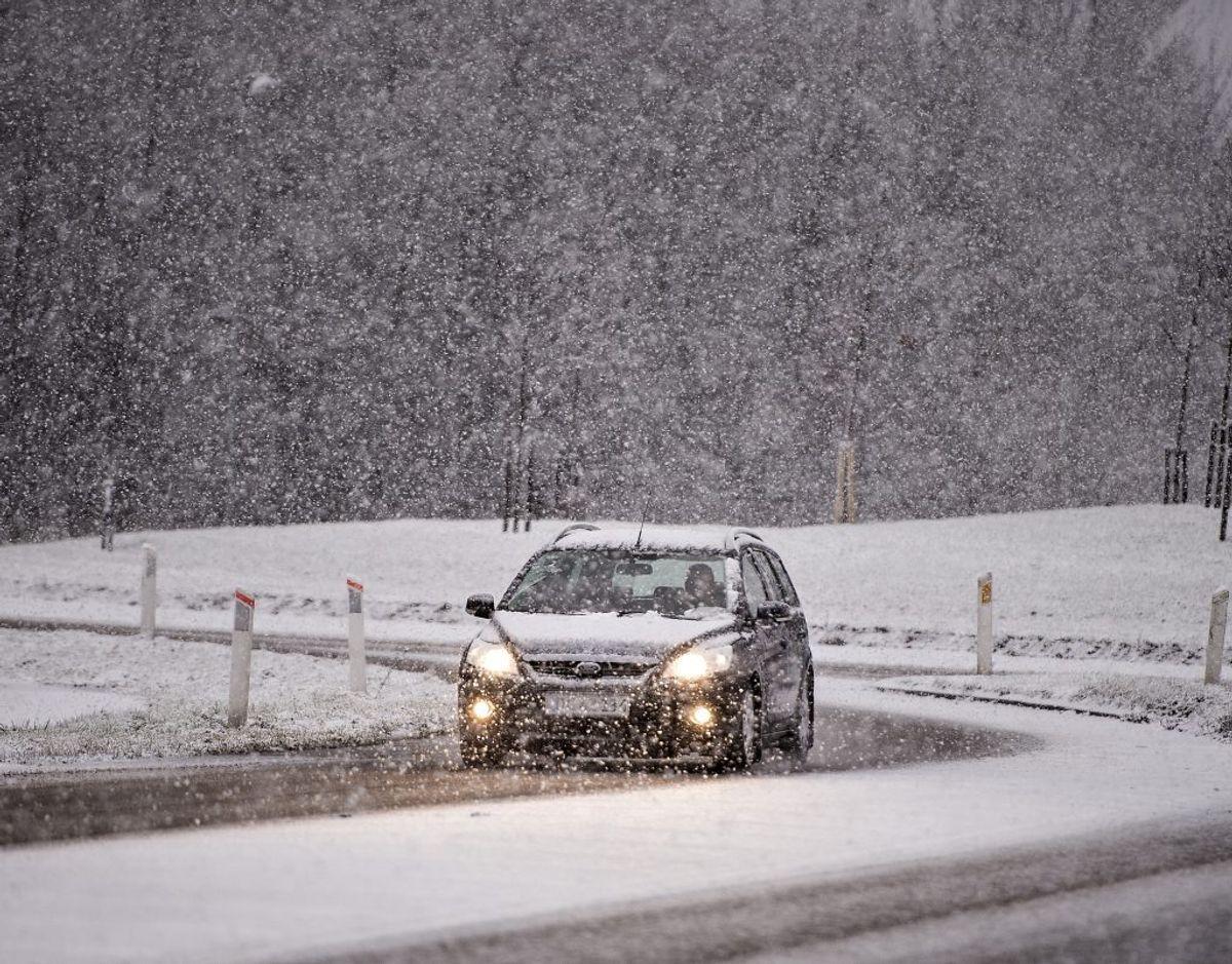 Står den på nye vinterdæk i år, anbefaler FDM, at du går efter dæk, der ikke bare har gode egenskaber på sne og is men også på tør og våd vej. KLIK VIDERE OG SE 10 TING, DU SKAL VÆRE OPMÆRKSOM PÅ. (Arkivfoto) – Foto: Henning Bagger/Ritzau Scanpix