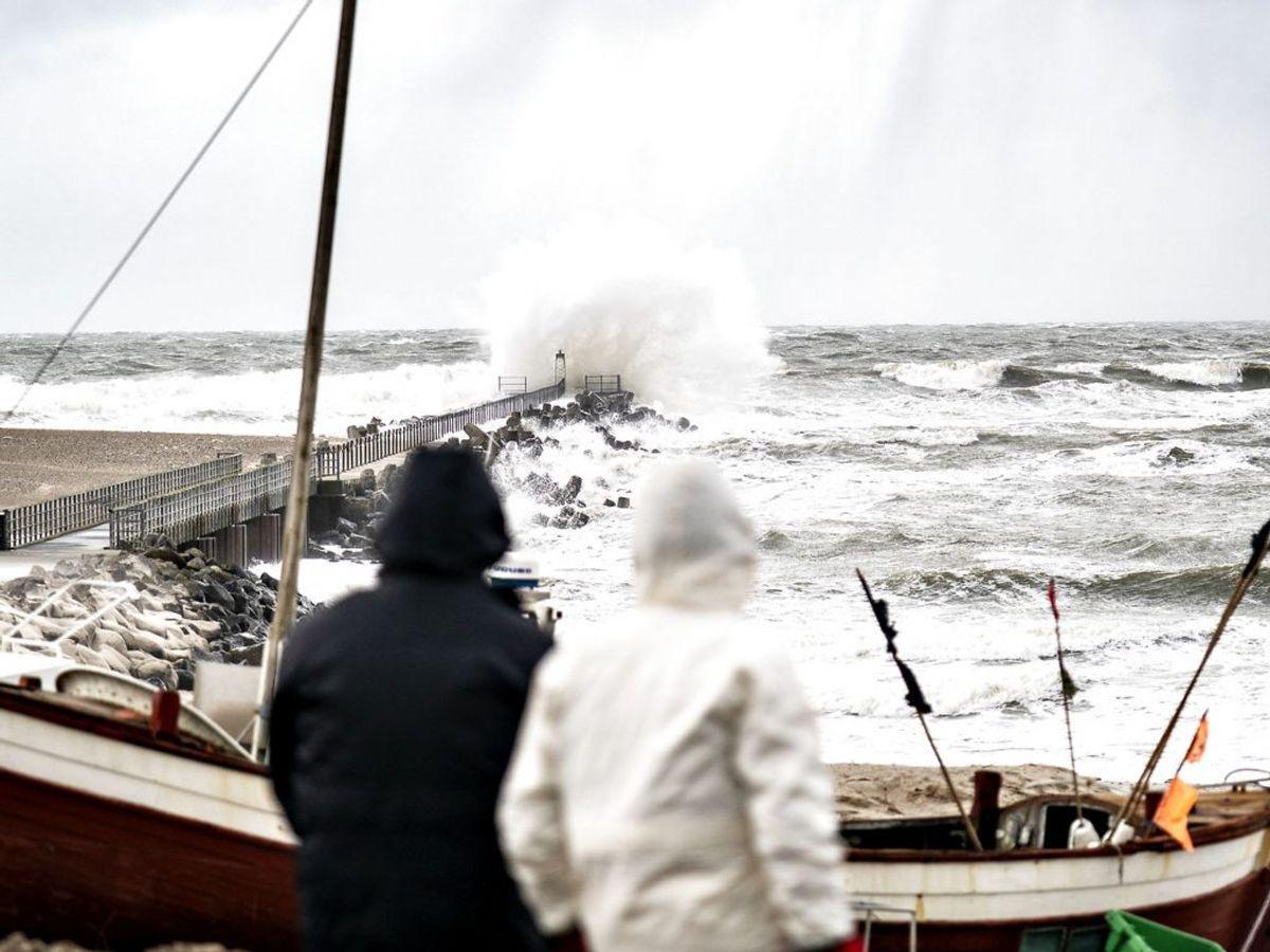 DMI advarer om vindstød af stormstyrke. KLIK for kort.. (Foto: Henning Bagger/Ritzau Scanpix)