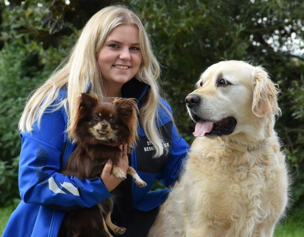 14-årige Johanne Skriver har samlet 40.000 kroner ind til Nordjyllands Dyreinternat. Her sidder hun med sine to hunde Fie og Buster. Foto: Dyrenes Beskyttelse
