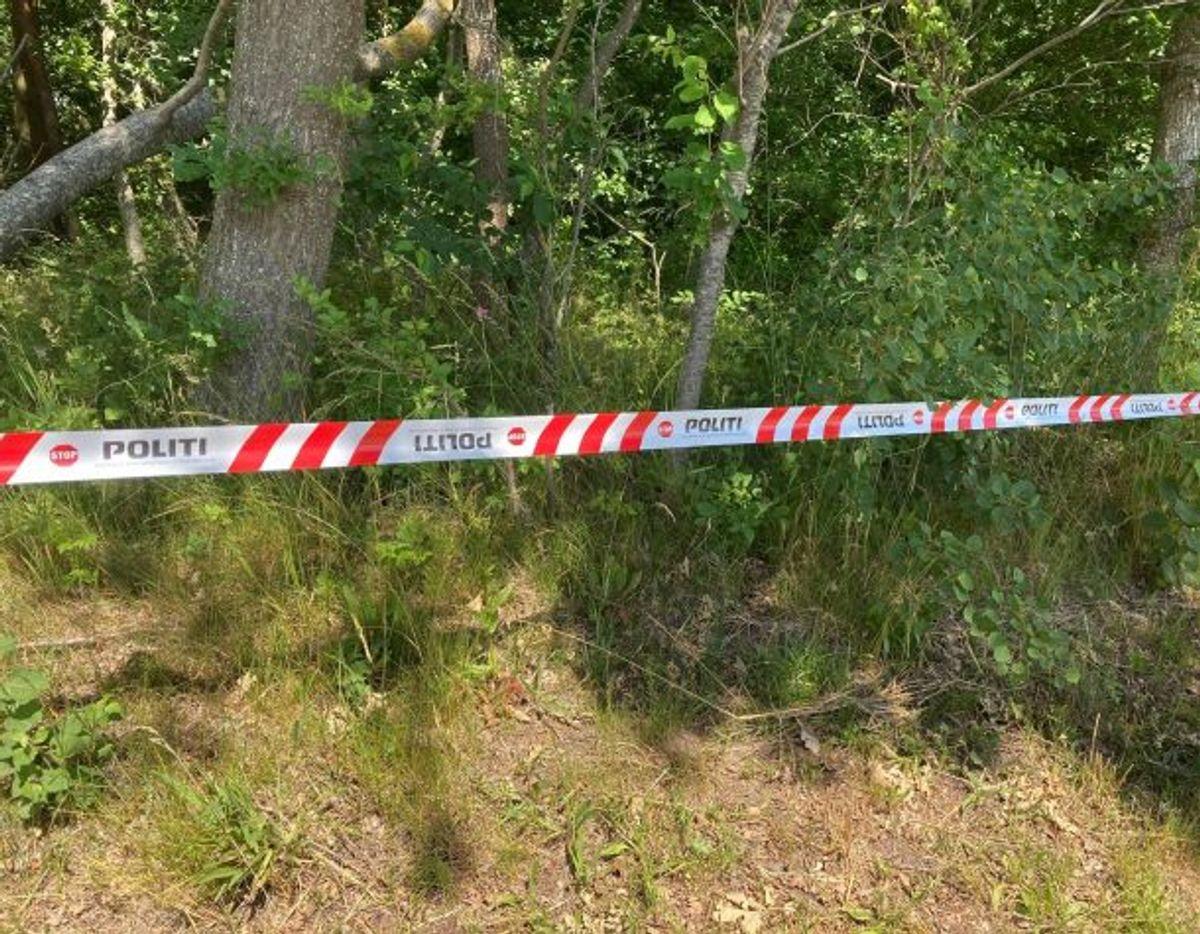 Den 28-årige Philip Johansen led en skrækkelig brutal død ifølge anklageskriftet. Foto: Presse-fotos.dk