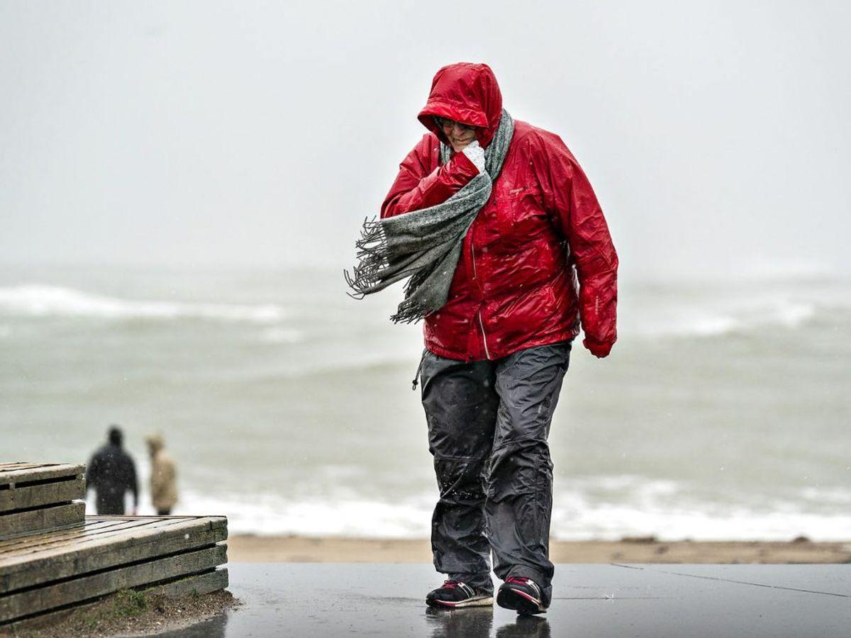 DMI har udsendt et varsle om kraftig vind hele dagen torsdag. KLIK VIDERE OG SE FLERE BILLEDER. Foto: Henning Bagger/Ritzau Scanpix