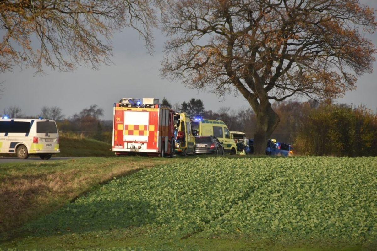 Politiet fandt ikke bremsespor på stedet, hvor bilen kørte ind i et træ. Foto: Presse-fotos.dk