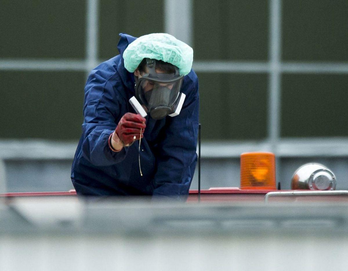 Billedet her er fra 2014 i Holland, hvor H5N8 også var på dagsordenen. Foto: Scanpix/Marco De Swart