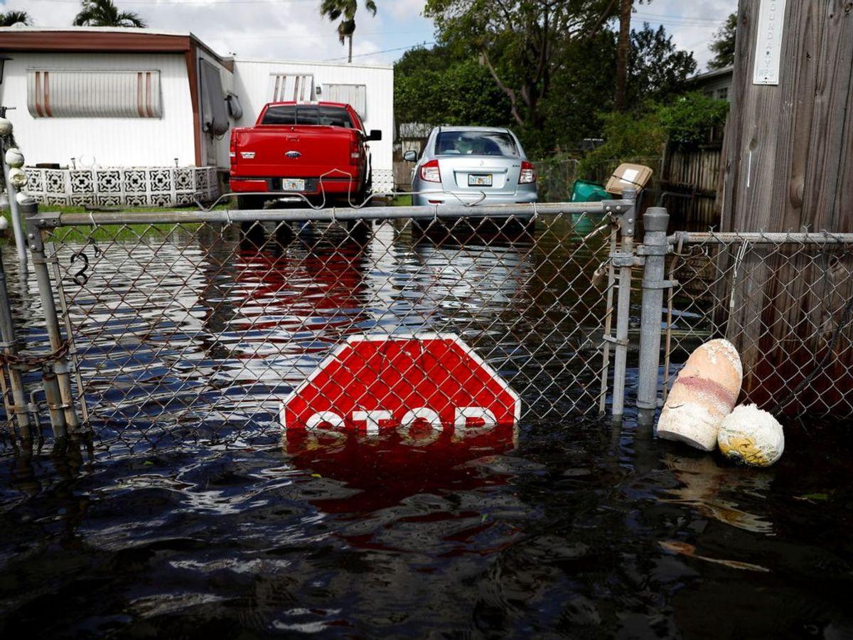 Oversvømmelser i byen Davie. Foto: Marco Bello/Scanpix.