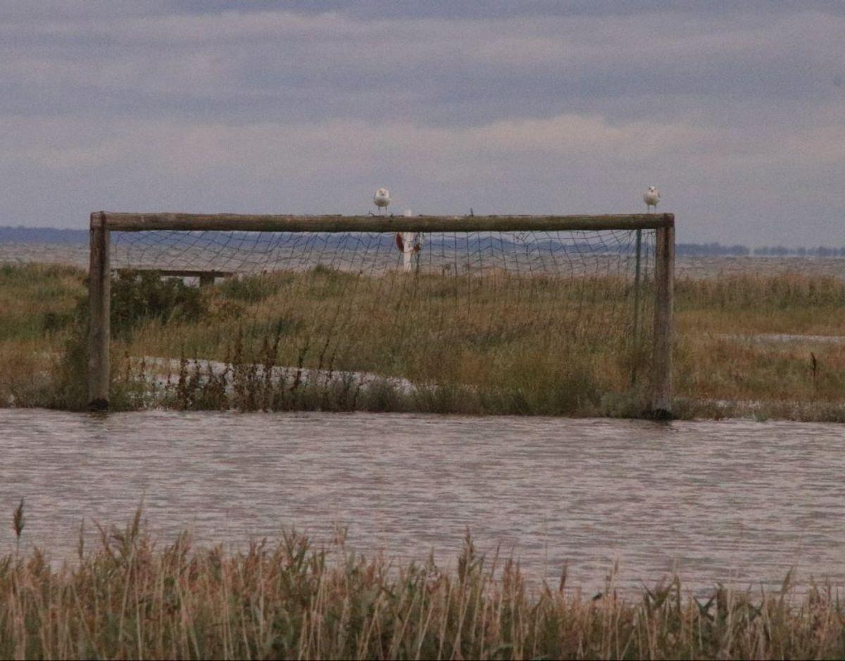 Ud mod vandet ved Assens ligger en legeplads – den er våd onsdag. Foto: Presse-fotos.dk