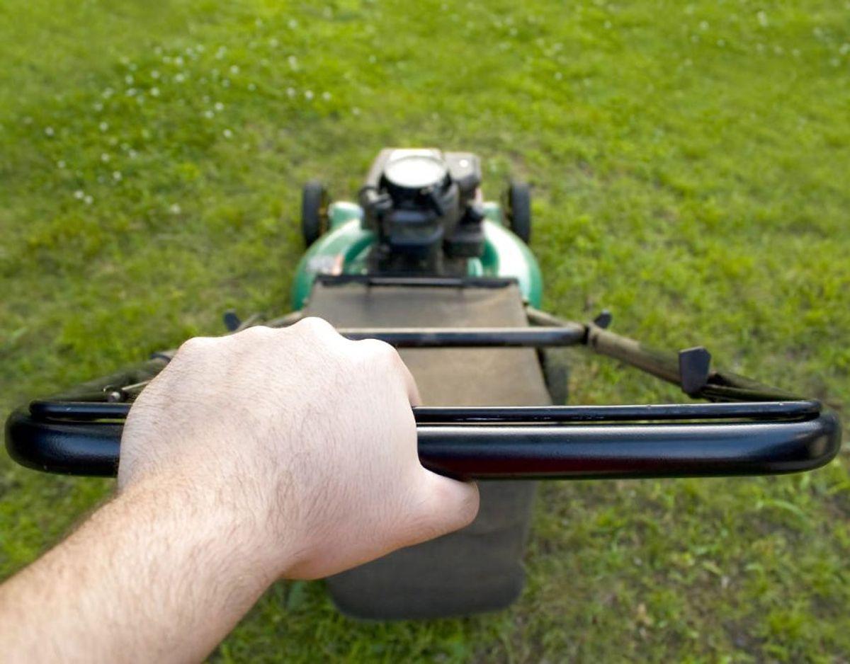 Find græsslåmaskinen frem for sidste gang. I oktober skal plænen slås for sidste gang, da græsset stopper med at vokse ved lavere temperaturer end seks grader. Kilde: Bolius Foto: Scanpix