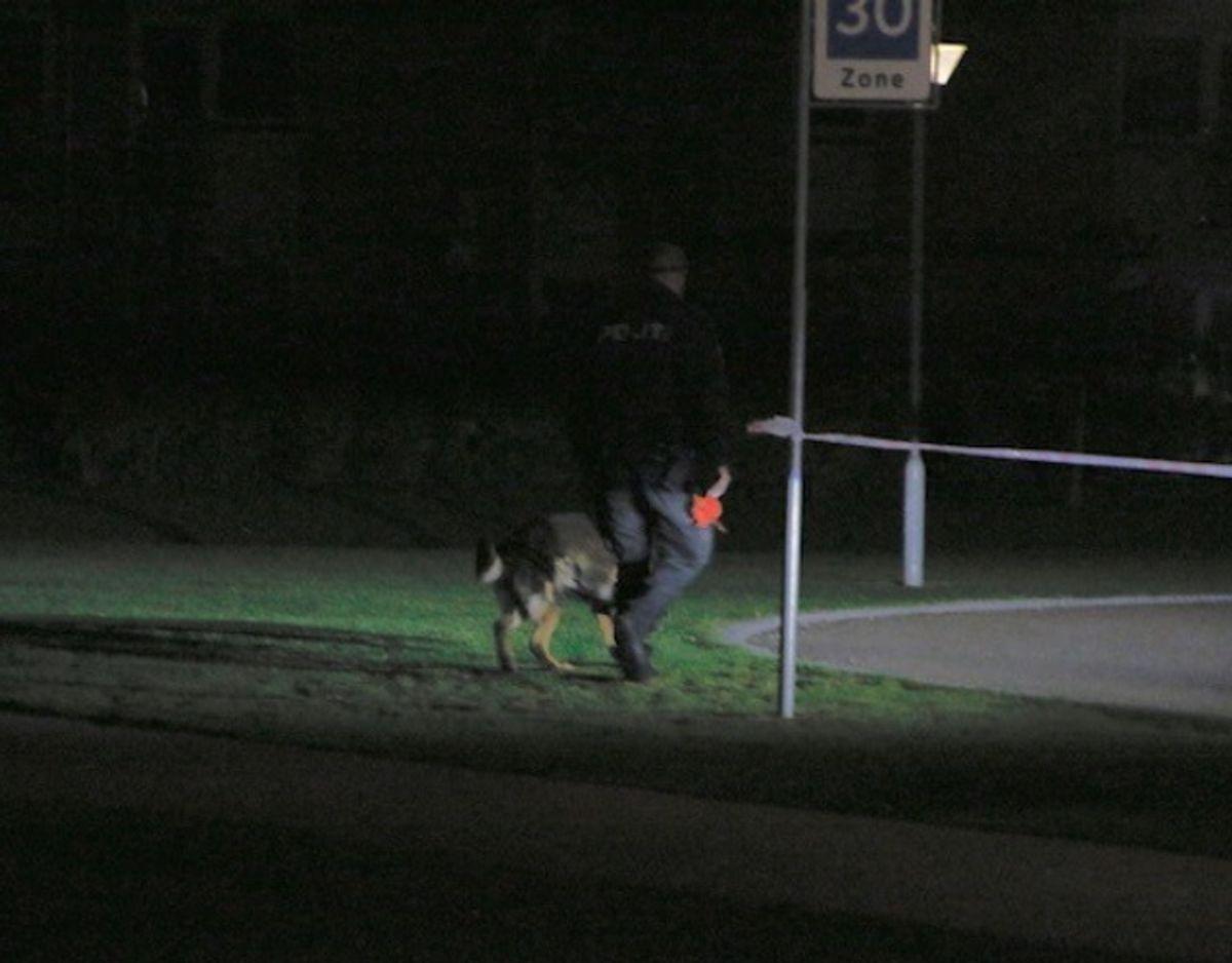 Der blev ikke fundet nogle brugbare spor, hverken af to- eller firbenede efterforskere. Foto: Presse-fotos.dk.