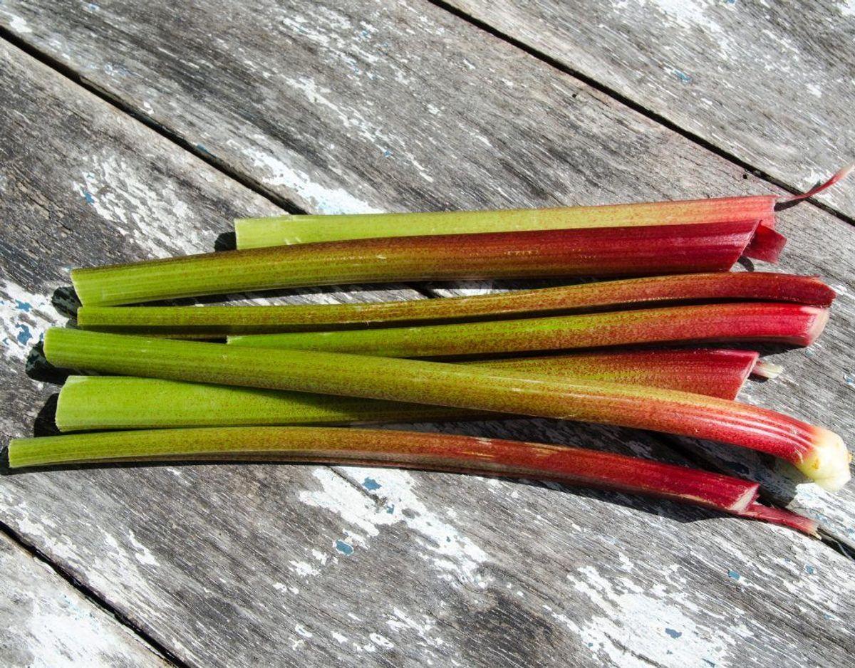 Rabarberblade: Kan påvirke fordøjelses-, nerve- og urinvejssystemet.
