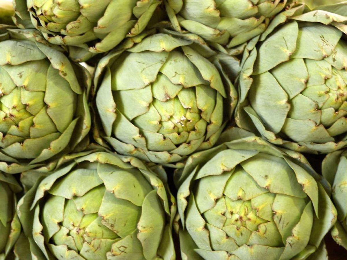 Ikke nok med at artiskokker indeholder fibre, indeholder det også inulin, der er med til at sørge for god tarmflora. Foto: Ritzau Scanpix