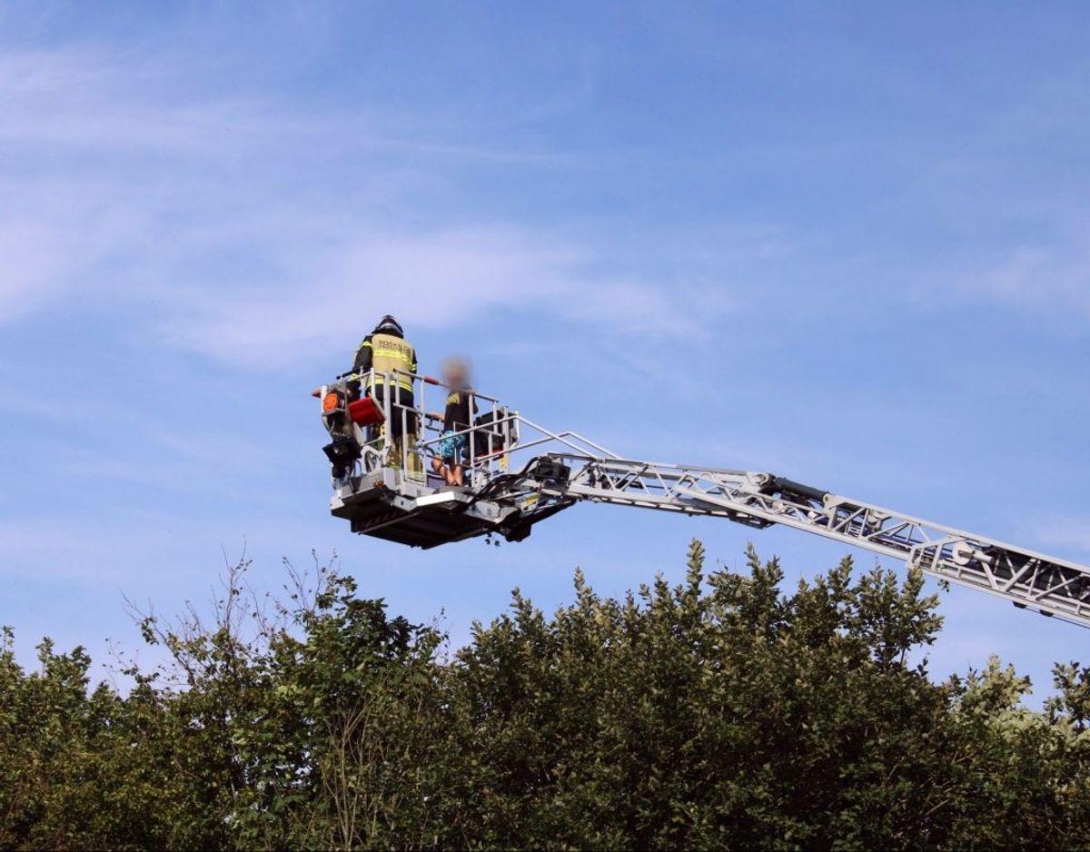 En dreng klatrede lidt for højt op i et træ nær sin skole. Foto: Presse-fotos.dk