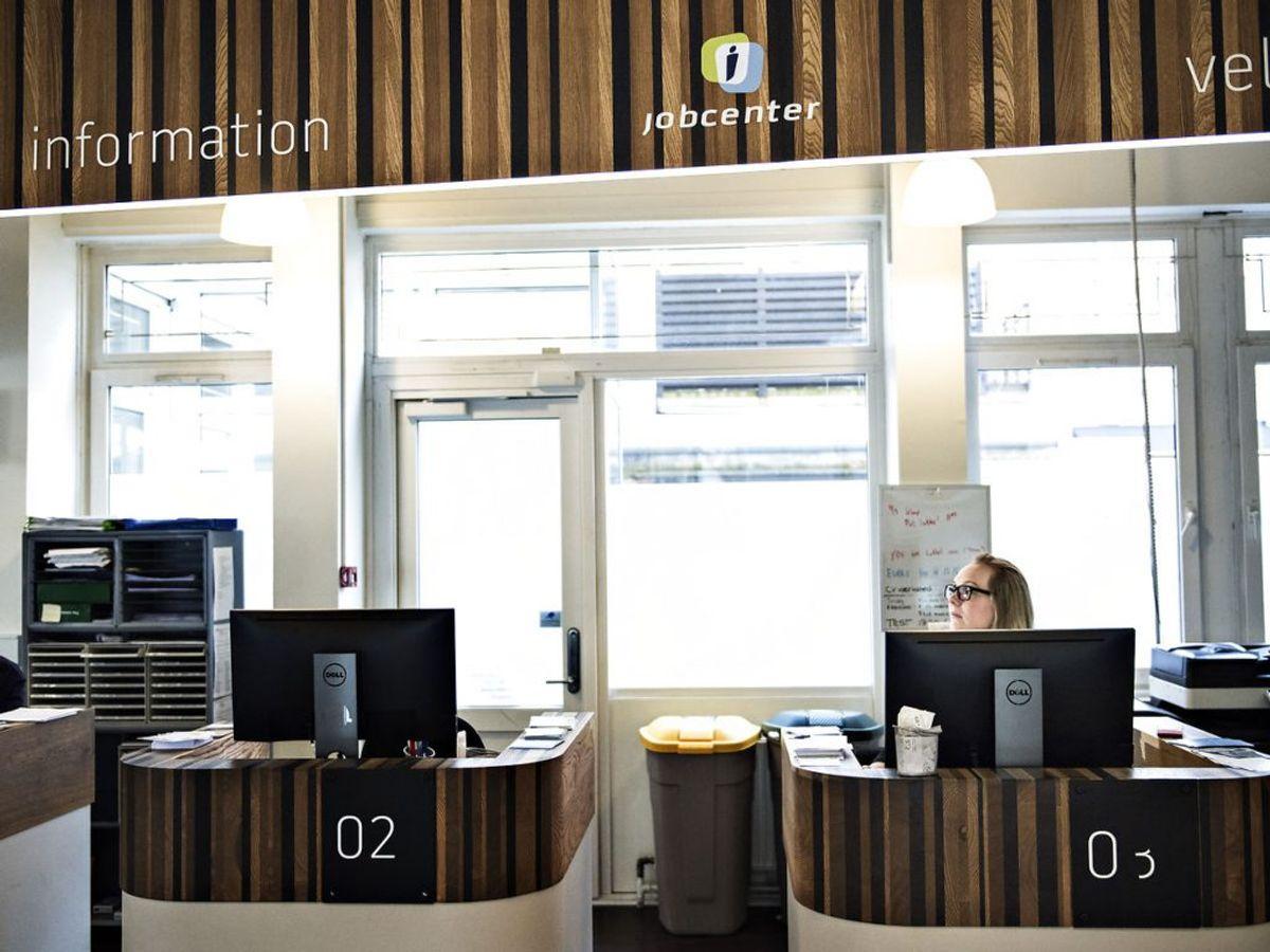 Afsæt et tidsrum om dagen, hvor du er jobsøgende. (Foto: Ida Guldbæk Arentsen/Ritzau Scanpix)