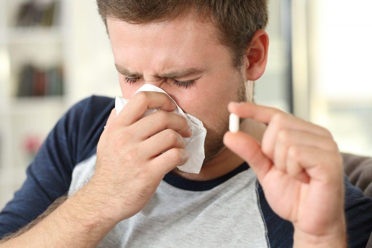 HØFEBER: Symptomer kan være konstante eller komme i pludselige kraftige anfald. Det sker, når du indånder stoffer, du ikke tåler, som fx pollen eller allergener fra dyr. KLIK VIDERE OG SE DE TYPISKE SYMPTOMER PÅ COVID-19. Kilde: Astma-Allergi Danmark. Arkivfoto.