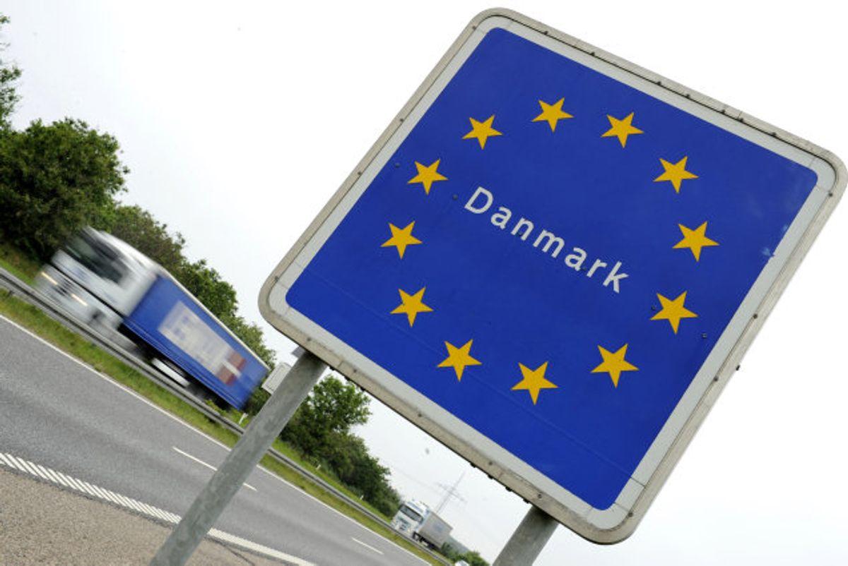 Onsdag formiddag blev en varebil med to polske statsborgere stoppet ved grænsen til Danmark. En af polakkerne forsøgte at få 25 hundehvalpe ind i landet. (Arkivfoto) Foto: Fabian Bimmer/Reuters
