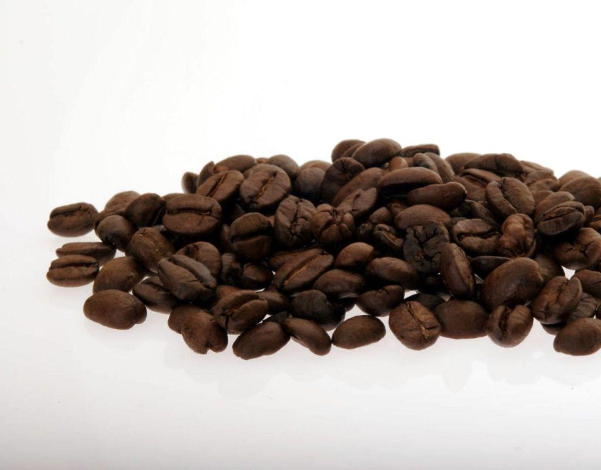 Kaffebønner er en anden ting, der bør smides ud af fryseren. De bevarer ganske rigtig sin friskhed, men kaffebønner suger også fugt fra andre ting – og altså dermed også smag. Så de SKAL bruges indenfor tre måneder. Foto: