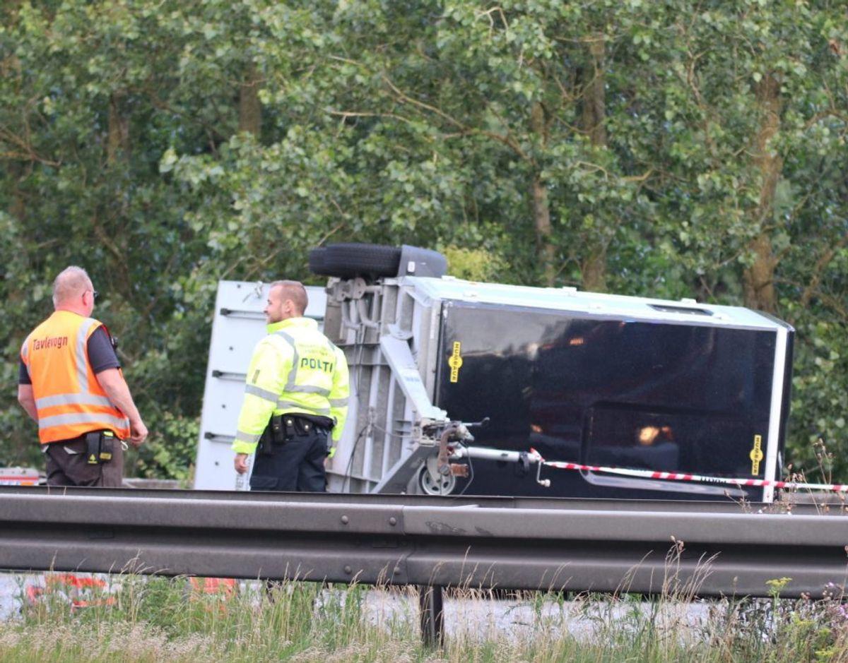 For en hest var uheldet på Østjyske Motorvej torsdag aften fatalt. Foto: Presse-fotos.dk