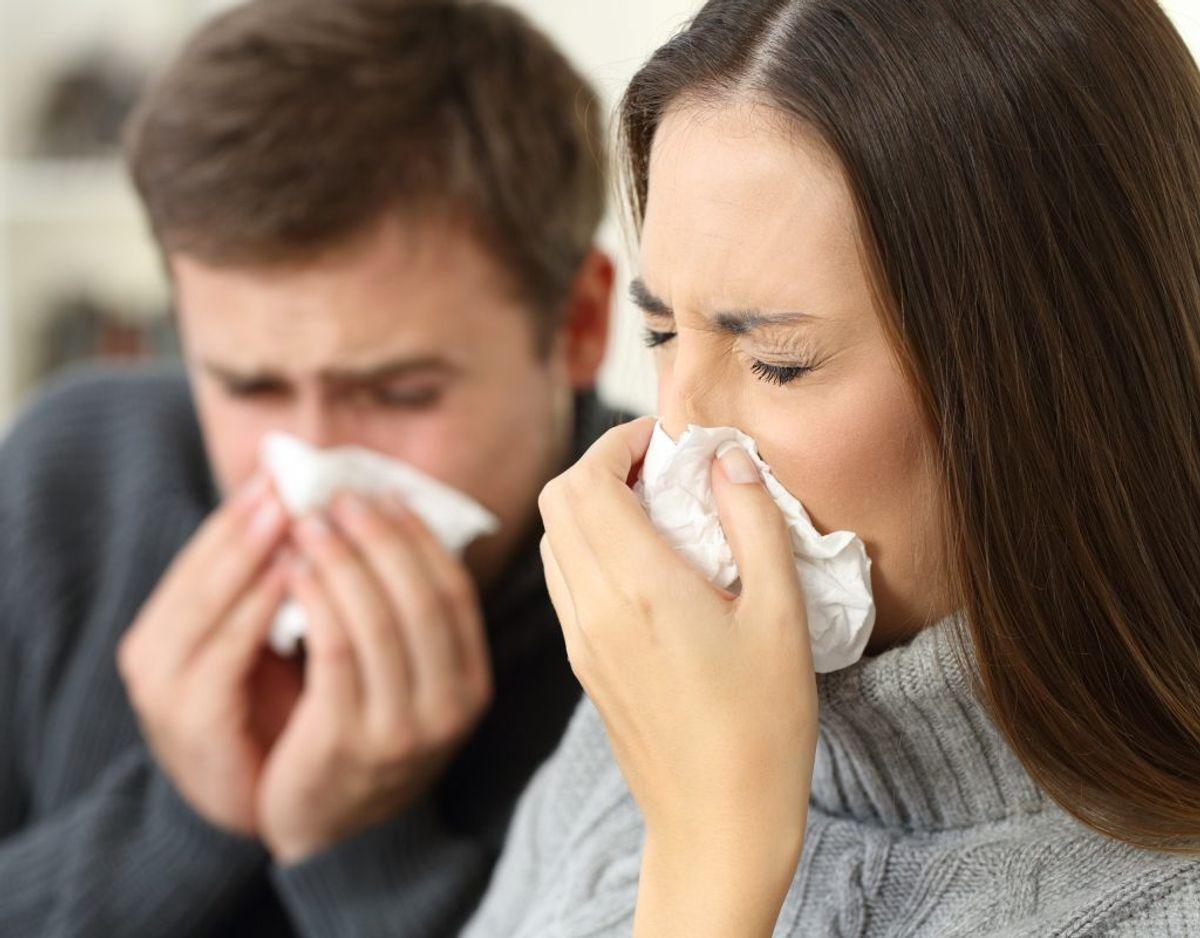 En zoonose er en sygdom, der smitter mellem mennesker og dyr. Nogle af de meste kendte er salmonella, campylobacter og rottesyge. Genrefoto. KLIK for mere.