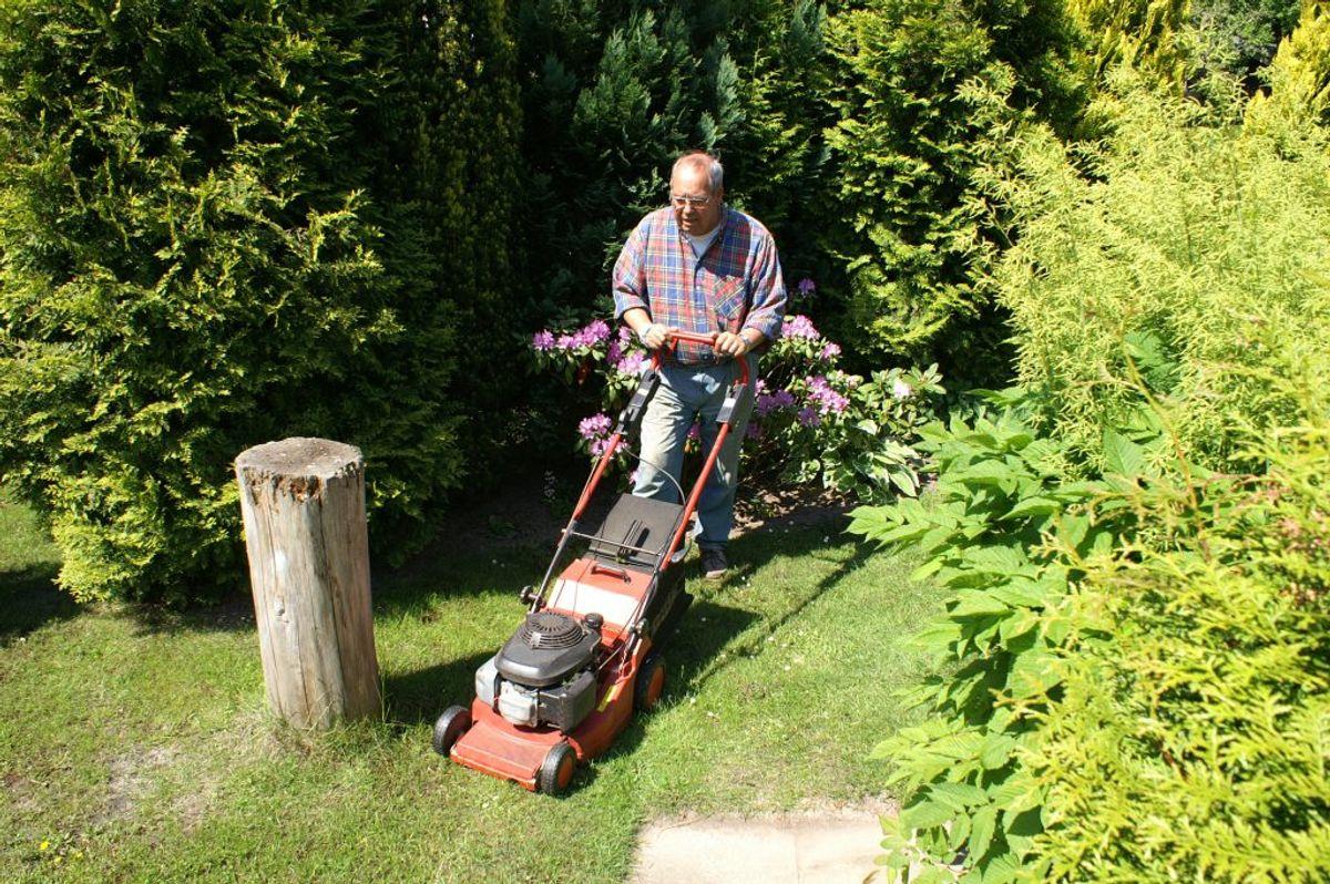 Der findes en række fejl med din græsplæne, du bør forsøge at undgå. KLIK VIDERE OG SE 12 GÆNGSE GRÆSPLÆNE-FEJL. Foto: Scanpix.