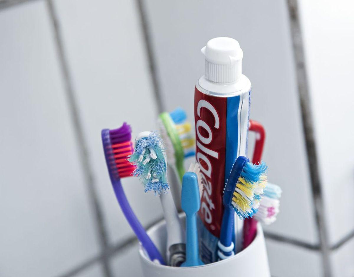 Opbevar familiens tandbørster i et skab, så der ikke kommer bakterier på. Foto: Scanpix