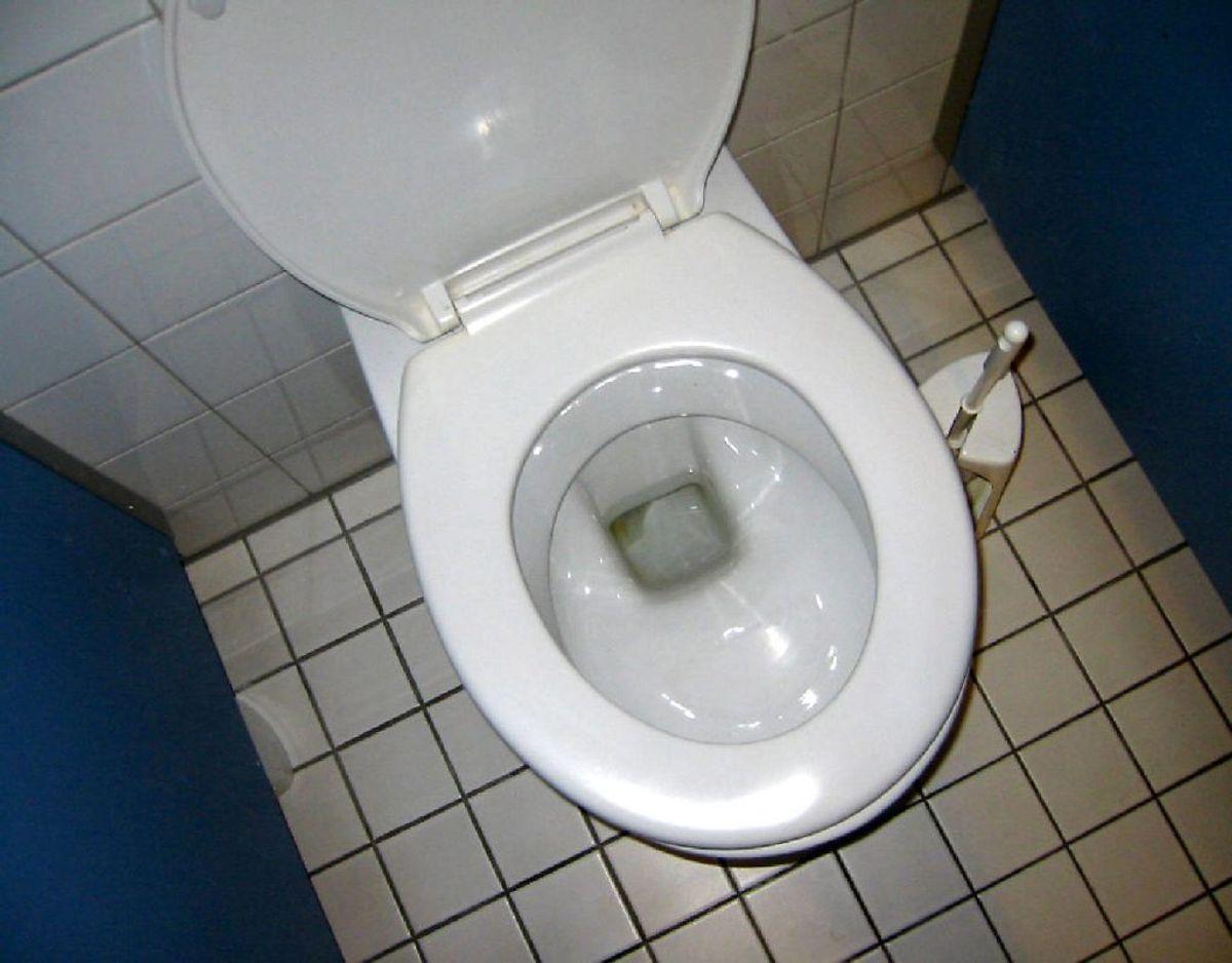 Er I mange om at dele toilet – for eksempel på arbejdspladsen – så brug sæderens. Foto: Scanpix