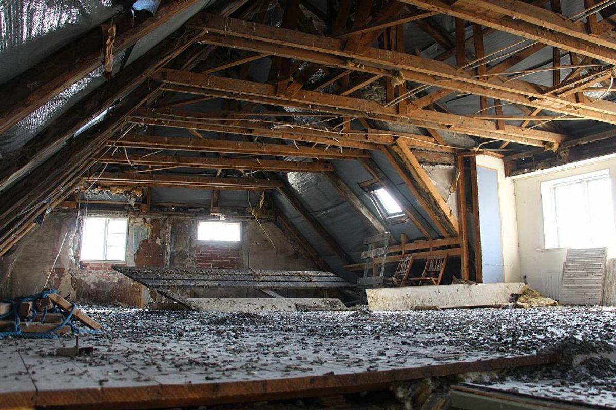 På husets loft er en stor flok duer flyttet ind. Foto: TV2 Østjylland