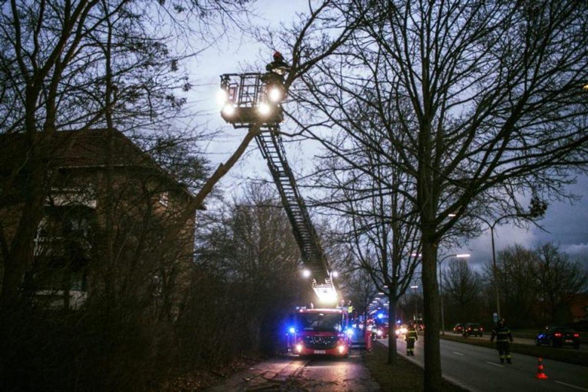 Drejestige anvendt til nedskæring af væltet træ. Foto: Beredskab Øst.