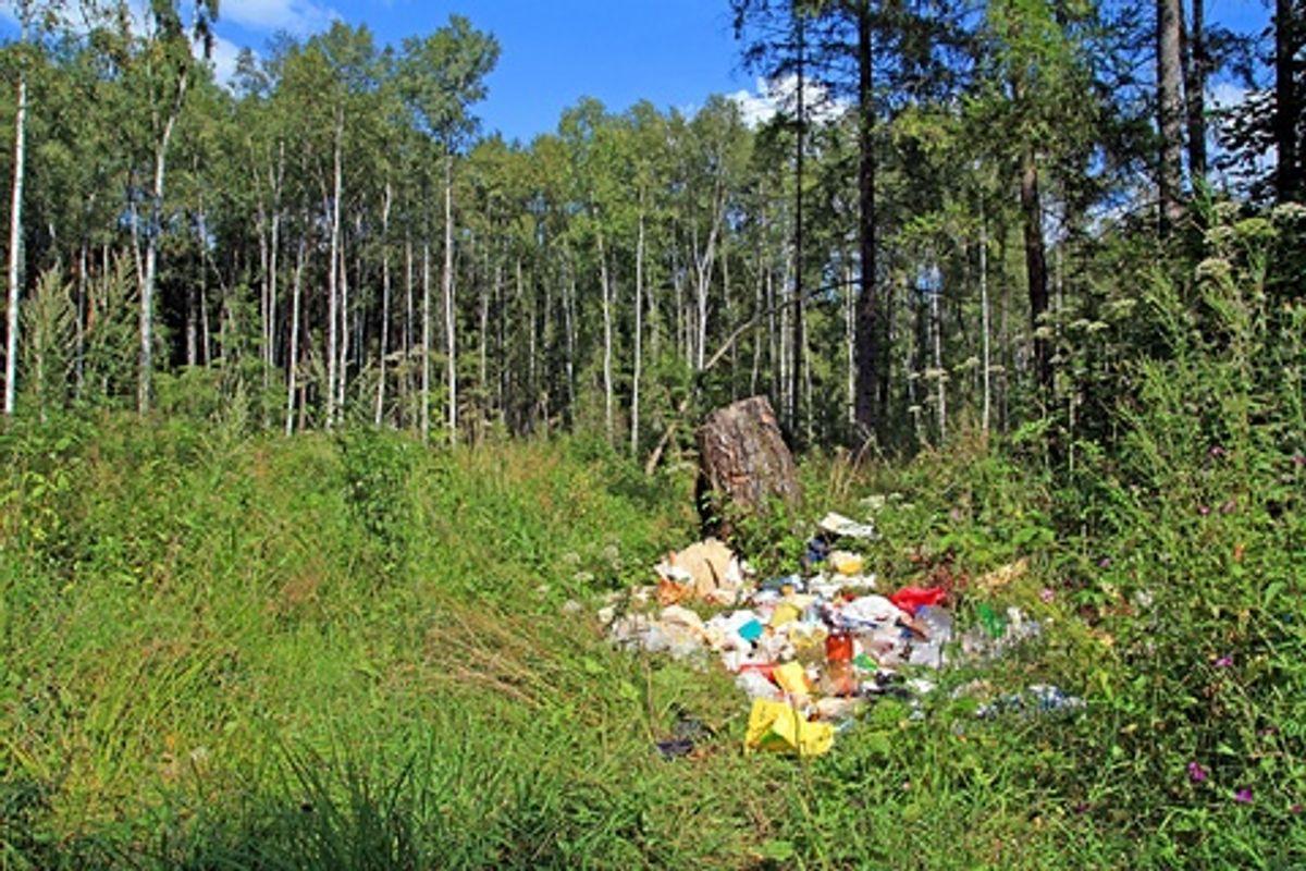 Sørg for at rydde op efter dig selv, når du for eksempel har holdt picnic i naturen. Kilde: Good Housekeeping. Arkivfoto.