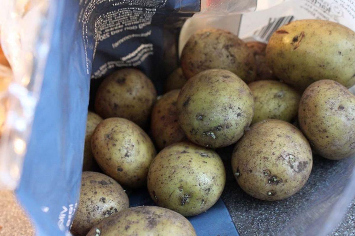 På grund af det høje indhold af stivelse er kartofler ikke velegnet til at komme i et blendermix. Det vil give en uønsket konsistens. Kilde: Reader's Digest. Arkivfoto.