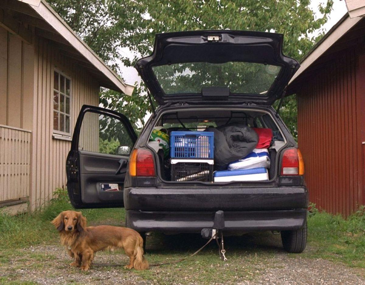 Kunne du finde på at pakke bilen eller kufferten til flyet og trodse regeringens rejseanbefalinger denne sommer? Det er der en del danskere,d er tilsyneladende godt kunne finde på. Arkivfoto: Scanpix.