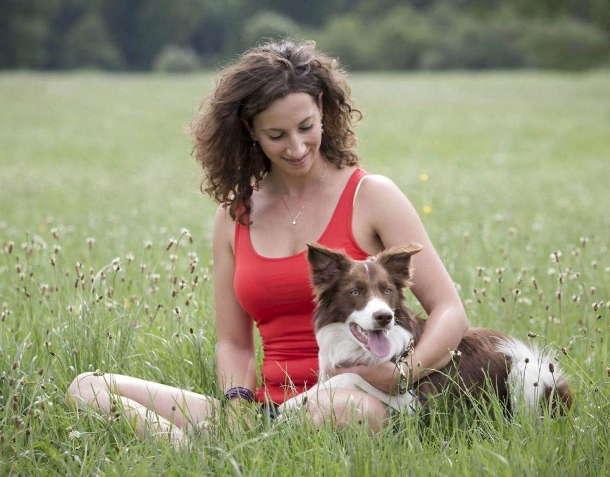 Har du også lyst til at have din hund ved din side i mange, så bør du overveje at få en af de hunderacer, der betegnes som sundest. KLIK VIDERE OG SE HVILKE RACER DER ER DET. Foto: Scanpix