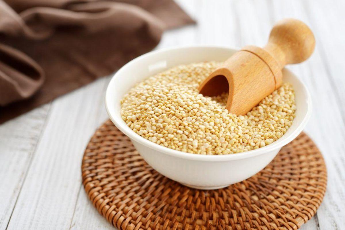 Quinoa. Kilde: Videnskab.dk. Arkivfoto.
