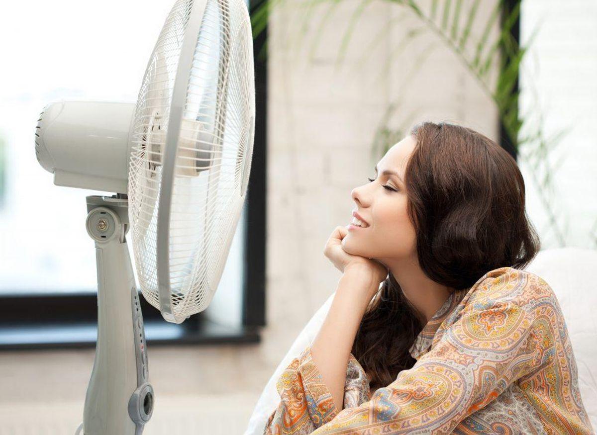 Hører du til typer, der bruger en ventilator om sommeren, skal du også huske at gøre den rent. Kilde: Reader's Digest. Arkivfoto.
