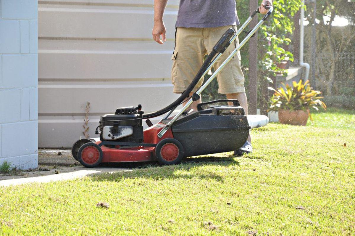 Start med at slå græsset.
